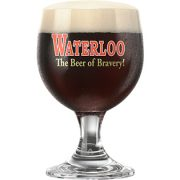 Waterloo Strong Dark Glass Aldan